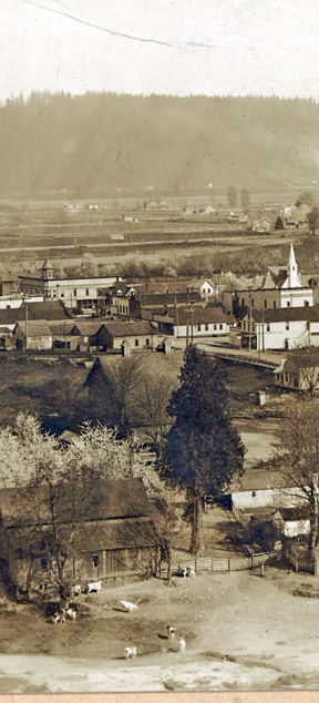 Overview of Sumner's Main Street in 1902