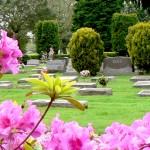 Cemetery_raised