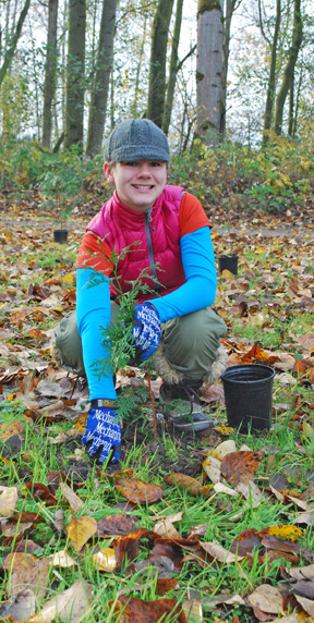 Volunteers plant trees along Sumner's trails.