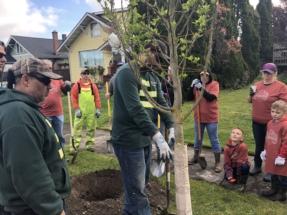 TreePlant 18 REI (4)