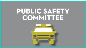 Public Safety Committee @ Virtual Only
