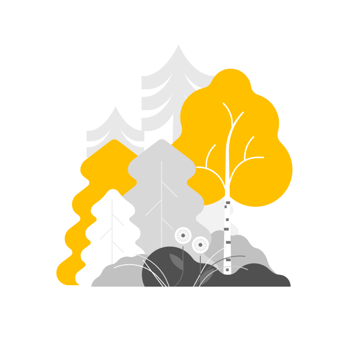 Forestry – PP