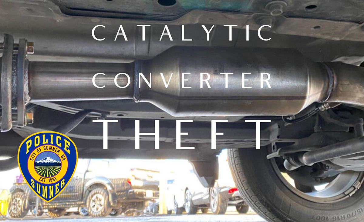 CC Theft2