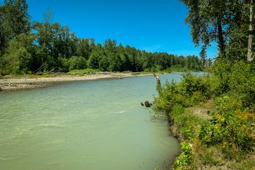 White River in the summer